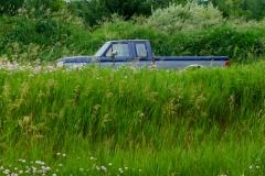 truckinthegrass