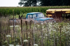 International_Harvester_Farm
