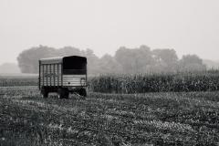 cornbreak