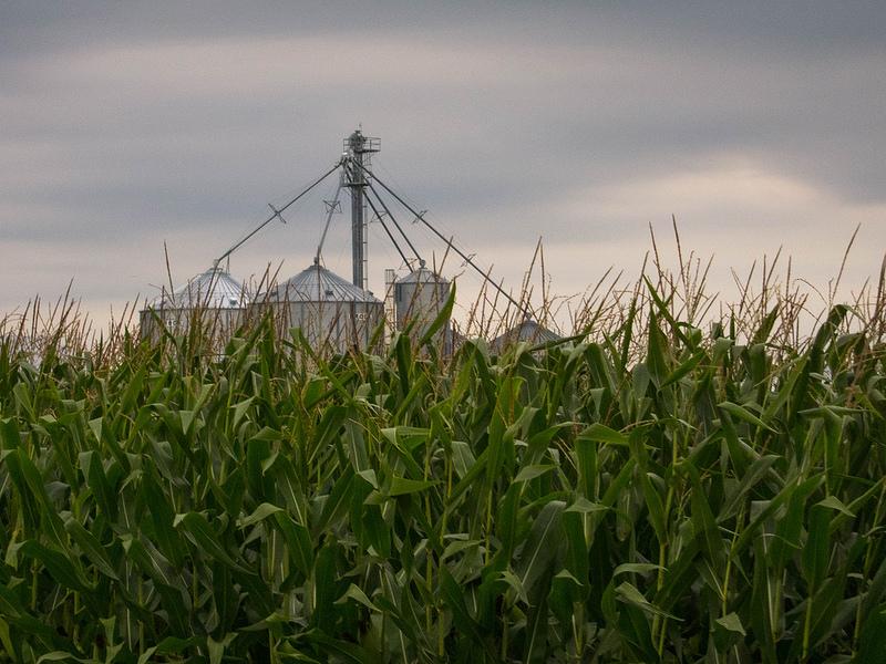 corn_grain_elevators_
