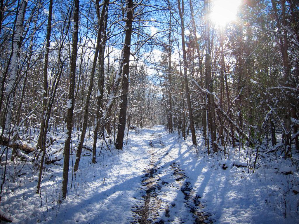 A snowy Raceway Path at Deerfield.
