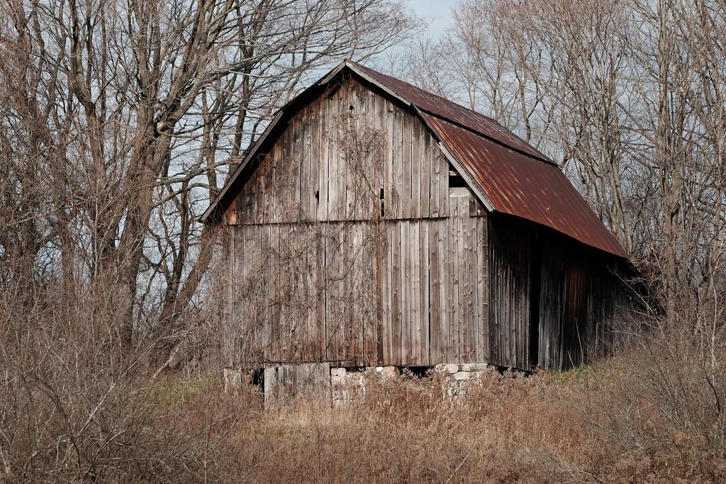 barn_not_seen