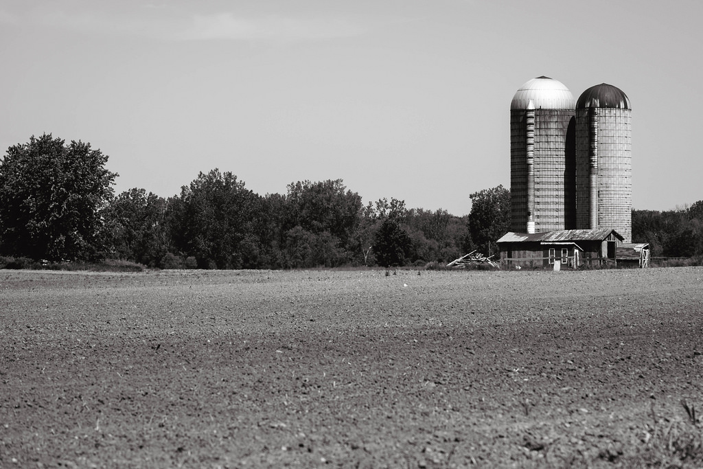 farm-bw-flat