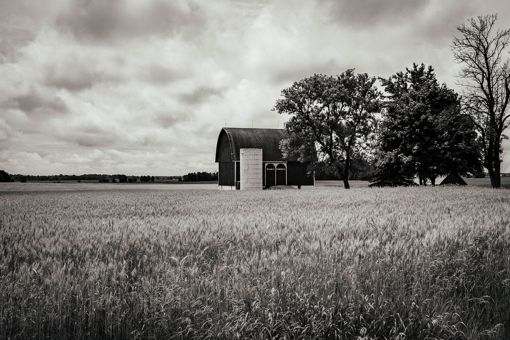 black-n-white-barn-2