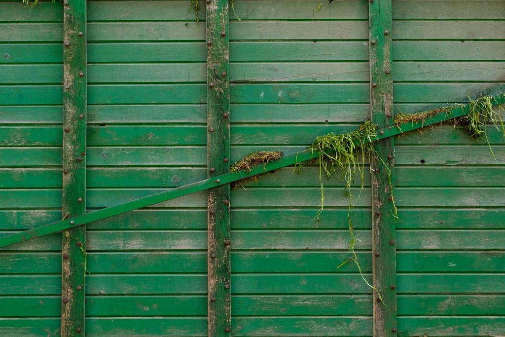 green-hay-wagon