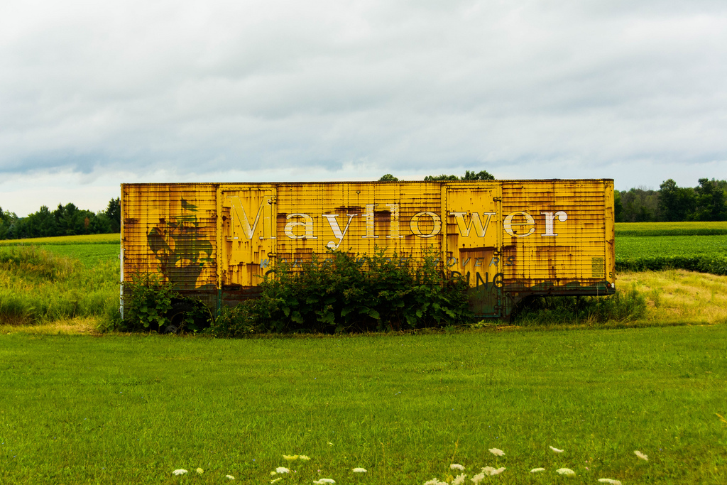 mayflower-shed