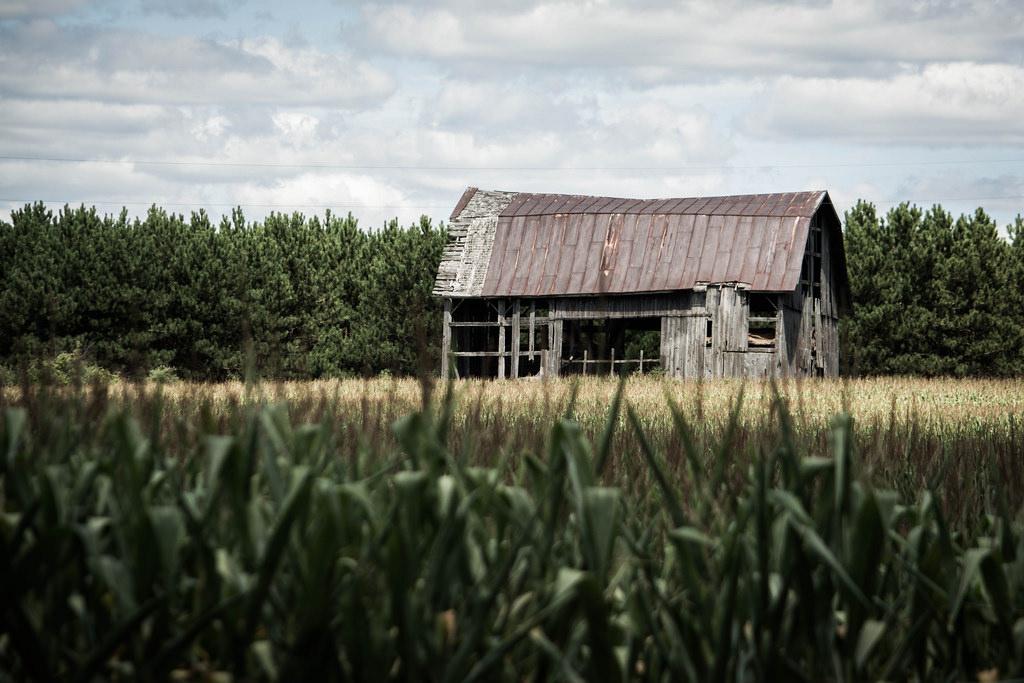 old-barn-in-field