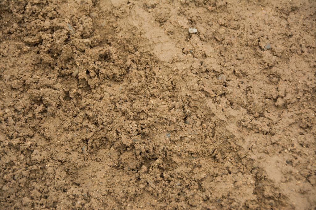 peanut-butter-mud