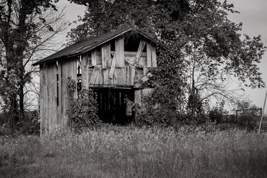 bw-barn-shack