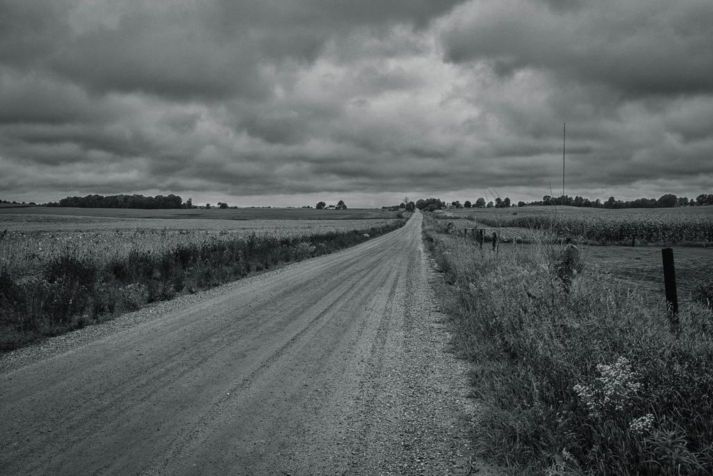 bw-dirt-north