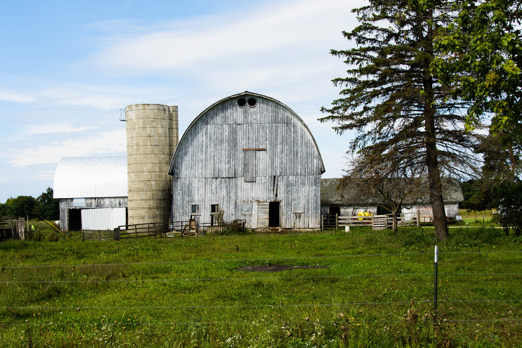 white-barn