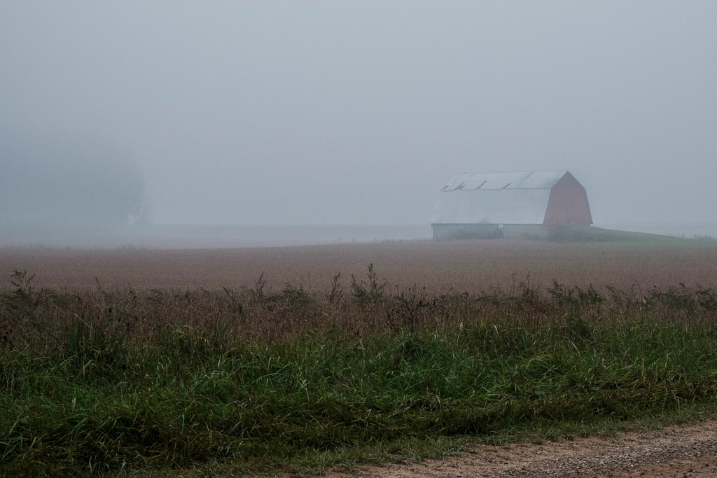 barn-in-fog-1
