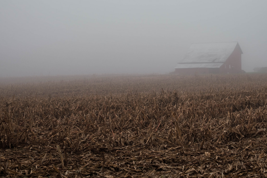 barn-in-fog-4