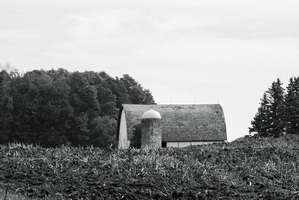 bw-barn-field