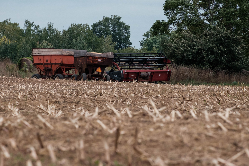 corn-wagons