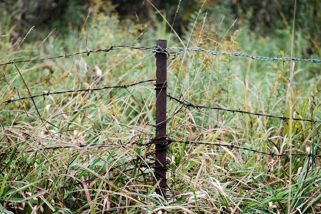 duo-colored-barbed-wire