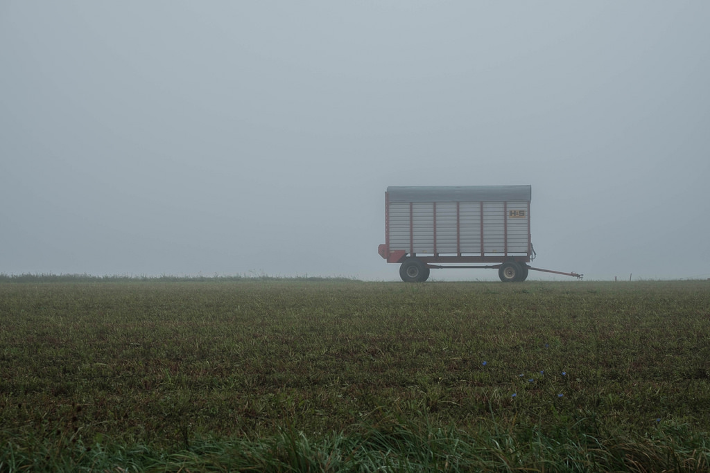 wagon-in-fog