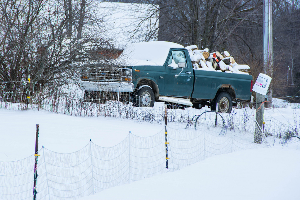 ford_f250_logs